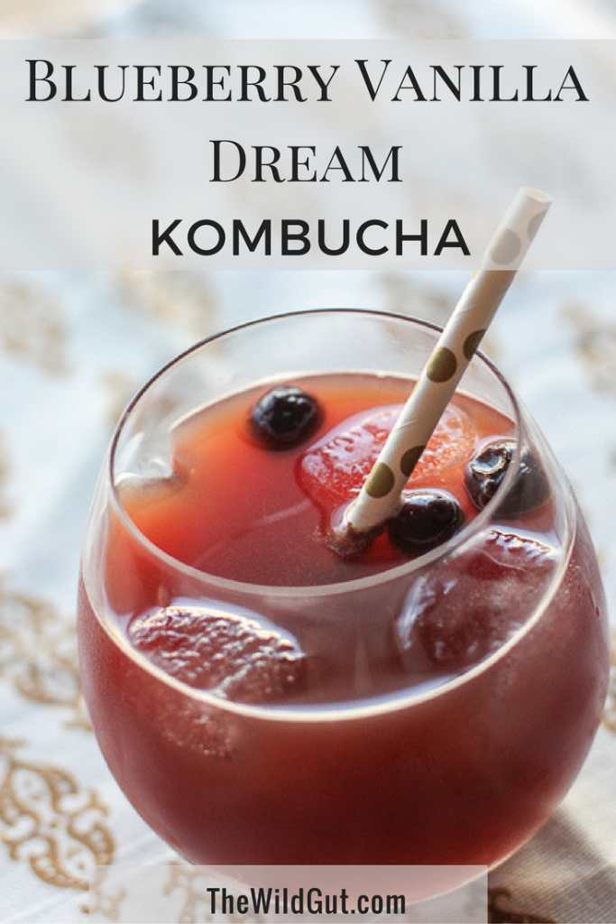 Blueberry Vanilla Dream Kombucha from The Wild Gut!