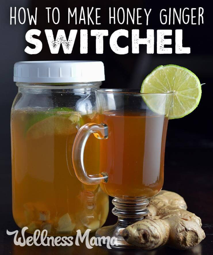 Ginger Honey Switchel from Wellness Mama