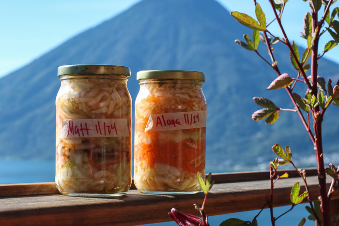 Take home sauerkraut from Love Probiotics