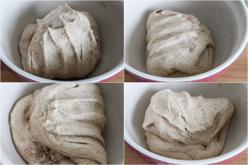 Folding dough for sourdough bread baking!