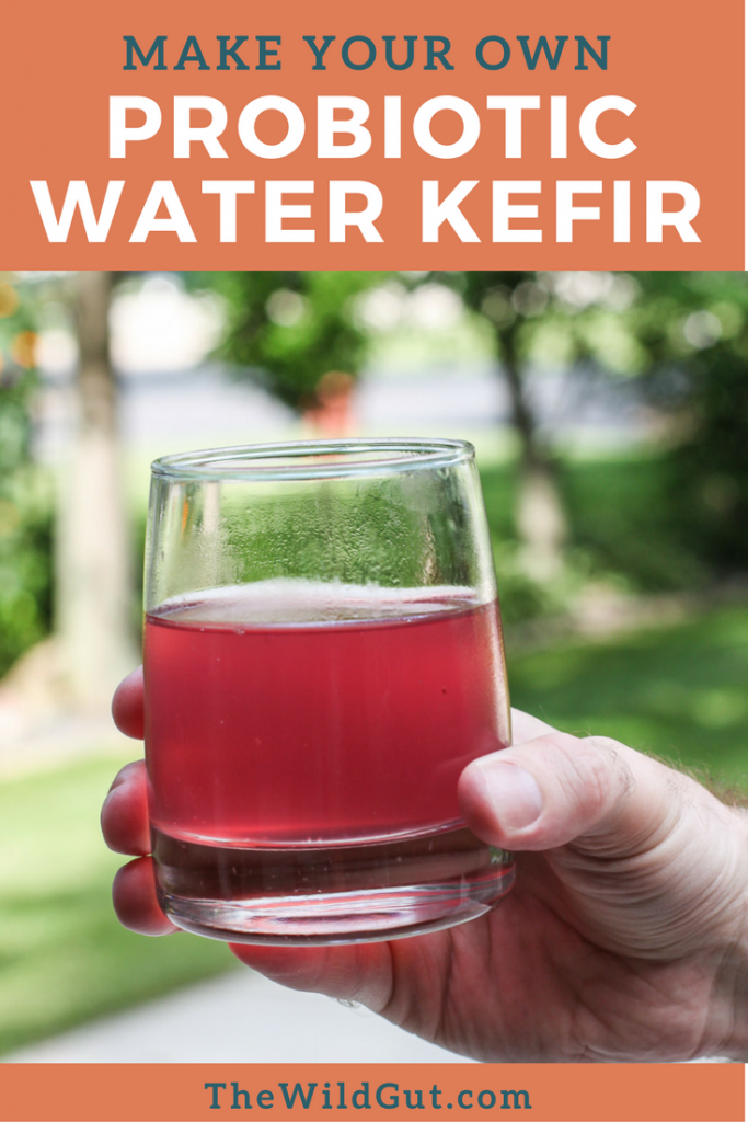 Water kefir is a fizzy drink packed with probiotics. Kids will love it!