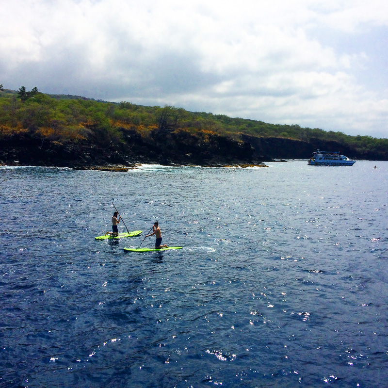 Paddle boarding with Fair Winds cruises in Kona, Hawaii