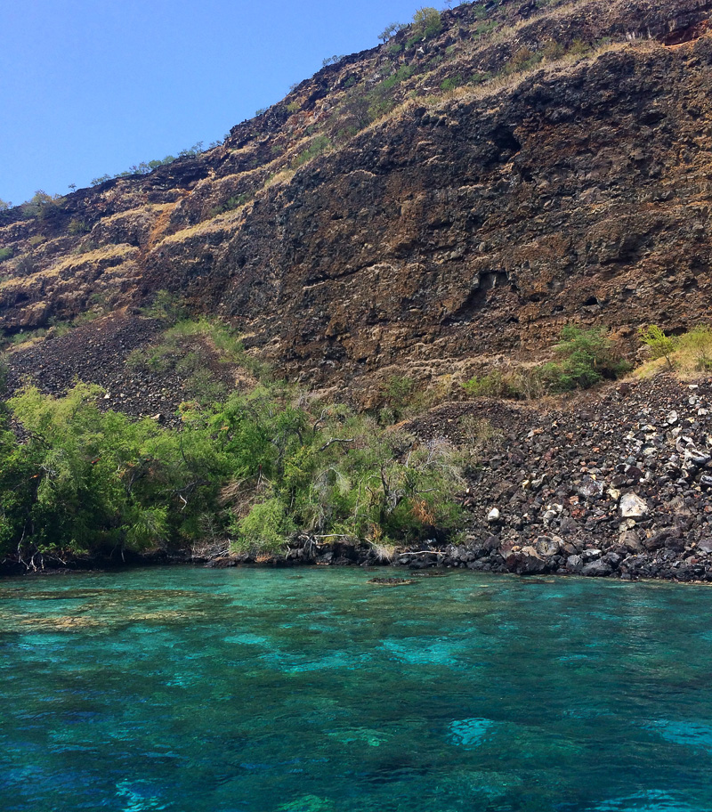 Snorkeling with Fair Winds in Kona, Hawaii