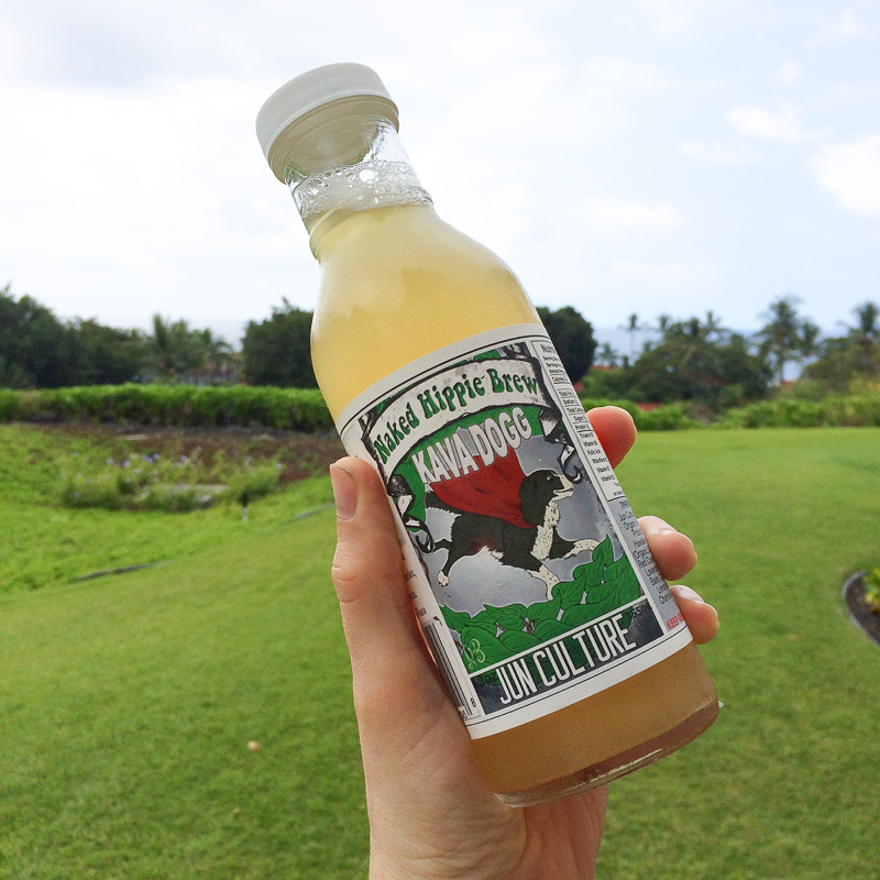 Jun cultured beverage on the Big Island in Hawaii