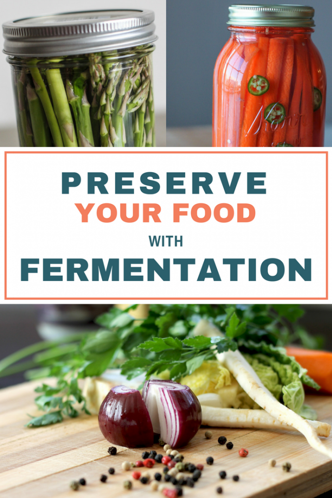 Avoid food waste and preserve your food with fermentation