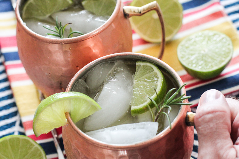 Easy Ginger Kombucha Moscow Mule Recipe!