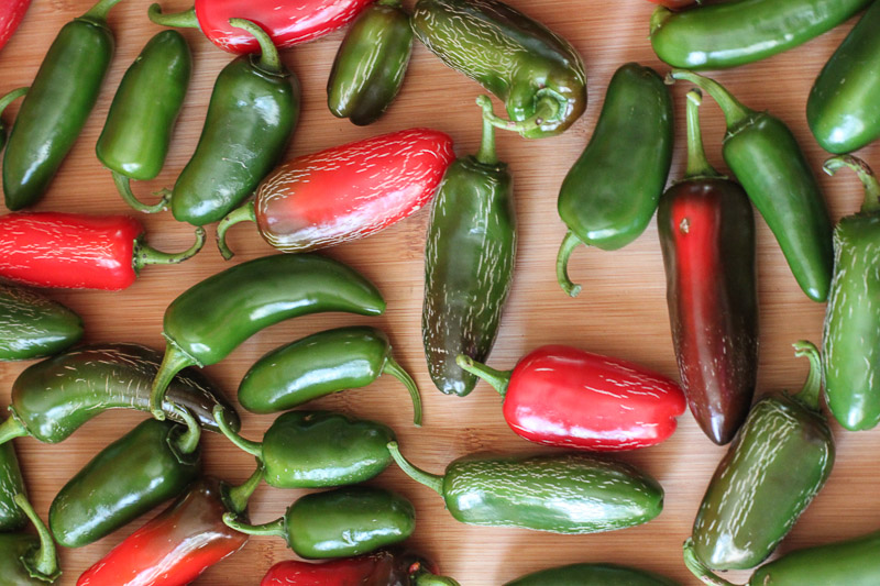 Fermented jalapeno pepper recipe