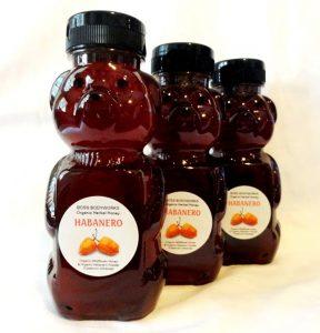 Organic Hot Honey gift idea front Etsy