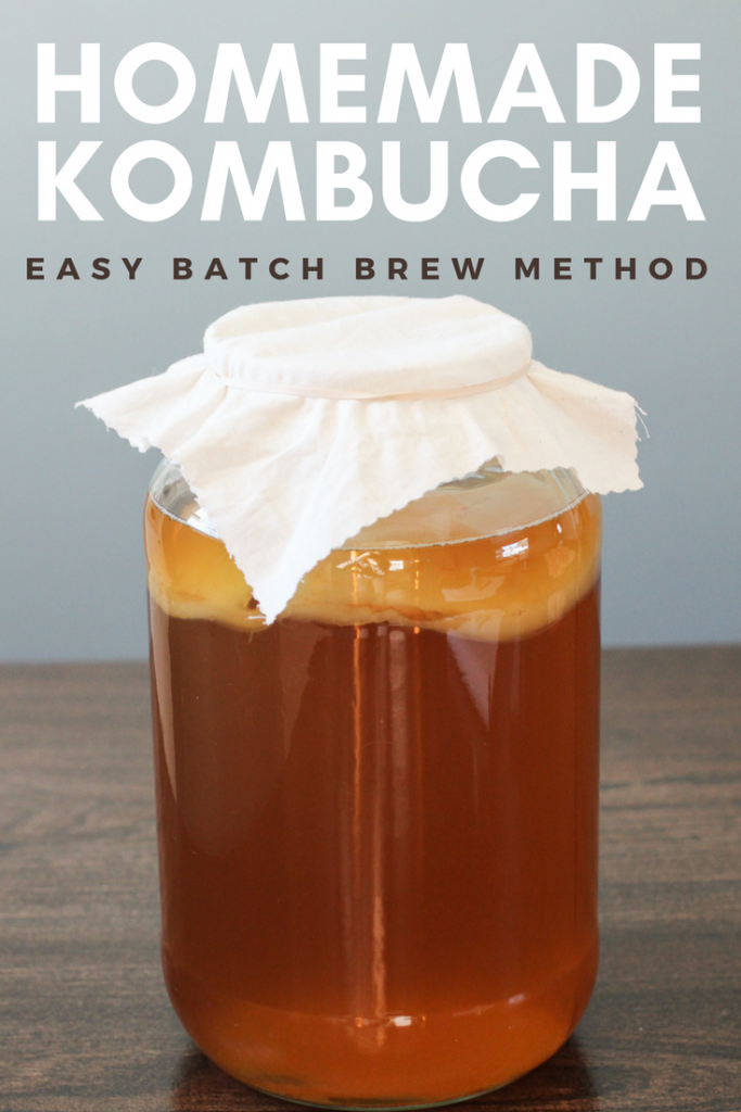 Make homemade kombucha using the batch brew method.