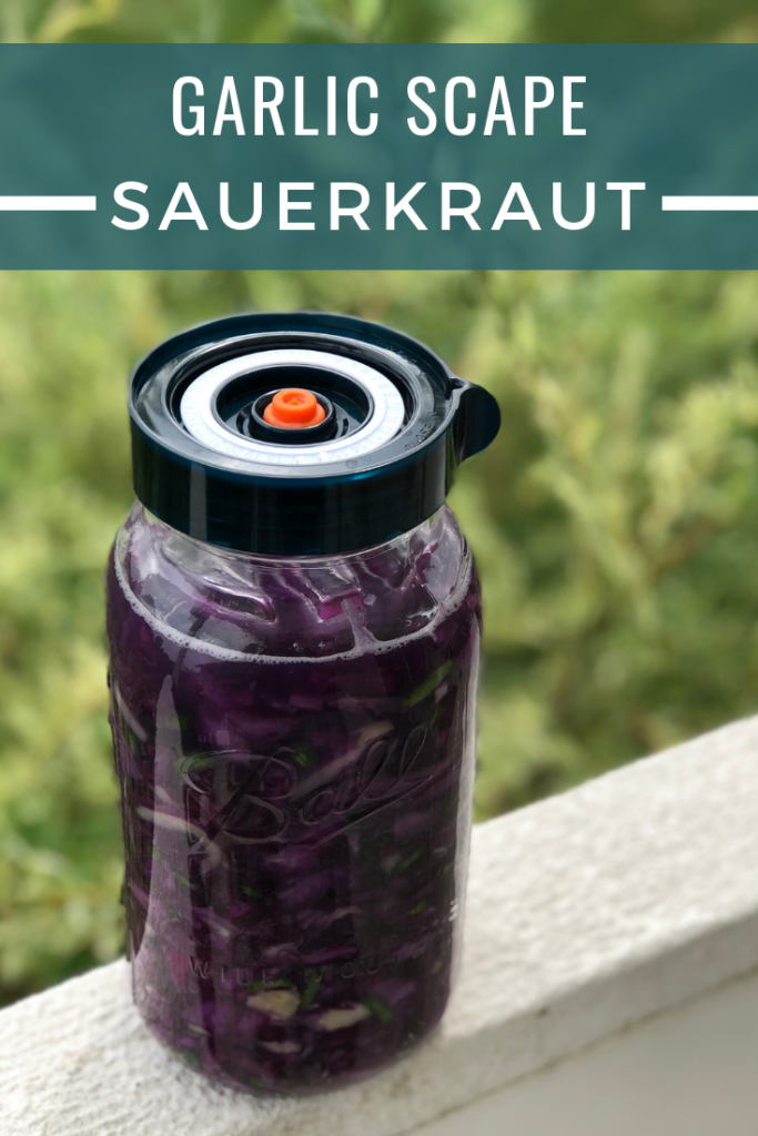 Garlic Scape Sauerkraut with Purple Cabbage is a unique twist on this popular probiotic rich fermented food. The garlic flavor makes is great for using on burgers, sandwiches and as a topping on healthy grain bowls.